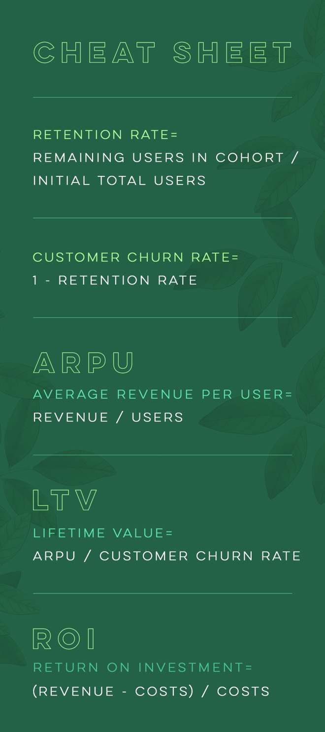 Video Marketing ROI and LTV Calculations