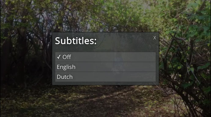 Subtitle Selection Screen
